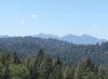 Mt Baldy View